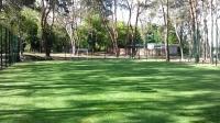 Искусственная трава универсальная 20мм (купить недорого цена)
